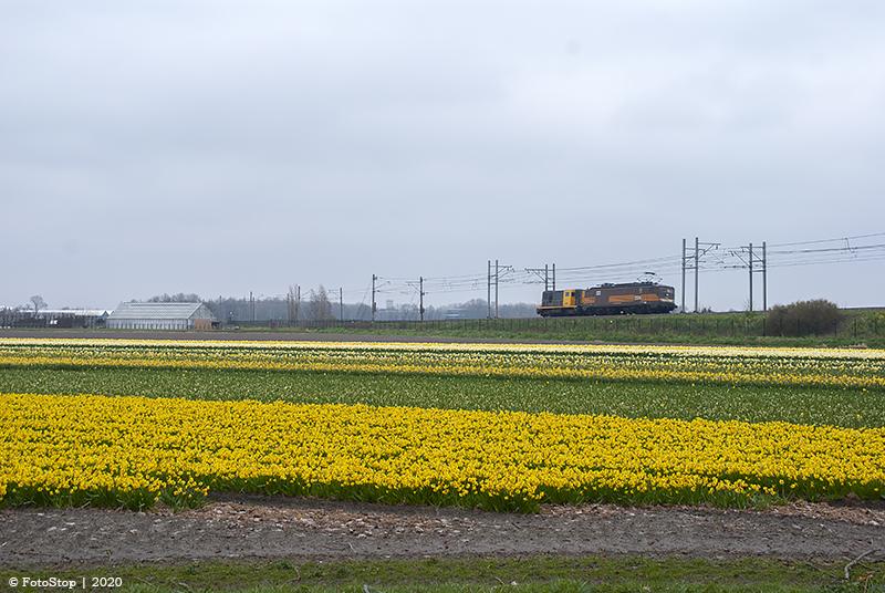 Roestrijden 1304&2454 - Sassenheim 15.03.2020